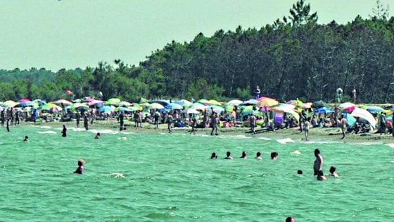 """Ravenna, la rivolta dei nudisti nella spiaggia della Bassona: """"Stretti come sardine"""""""