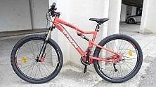 Alan, il ragazzo autistico che vola sui pedali ora ha una sua bici