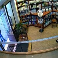 Bologna, rapina in una farmacia del centro: un 48enne finisce in carcere