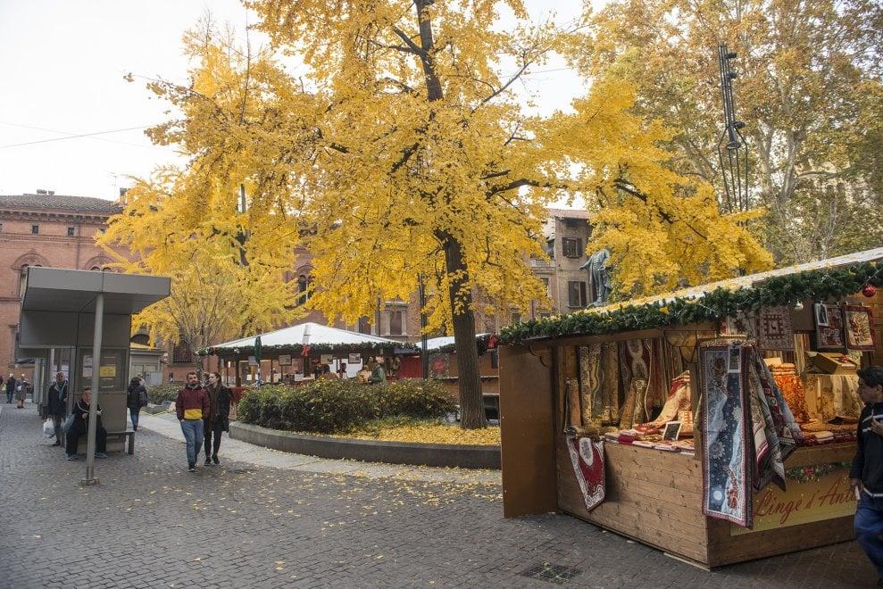 Atmosfera magica nel centro di Bologna tra foliage e Natale