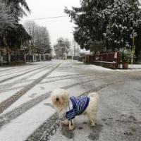 Maltempo, è arrivata la prima neve. Fiocchi anche in città