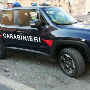 Modena, massacra di botte il suo cane e lo getta nella spazzatura