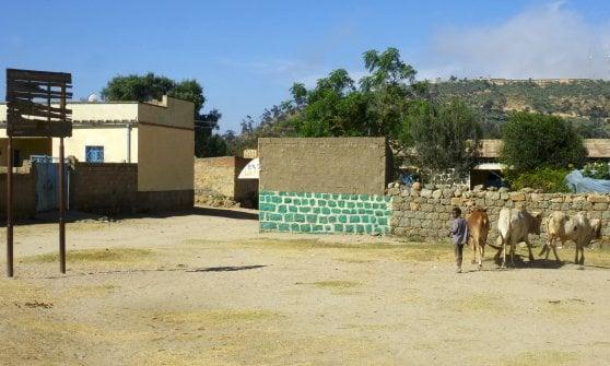 Tutti i canestri del mondo: dal Sudafrica alla Nuova Guinea