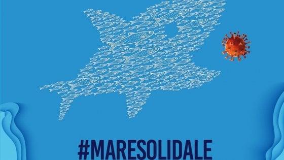 Le Sardine donano 25mila euro per mascherine e respiratori