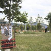 Lo sgombero dell'area verde in via Fioravanti: l'intervento di carabinieri e vigili