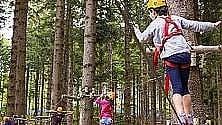 Un adventure park sui colli bolognesi: via libera della giunta