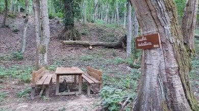 A lezione tra gli alberi. Spunta l'aula nel bosco della scuola di Castel d'Aiano