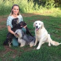 Premio fedeltà a quattro 'cani dottori' toscani