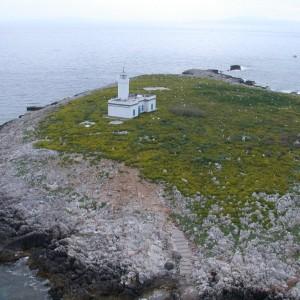 Tragedia alle Isole Formiche, morti tre sub