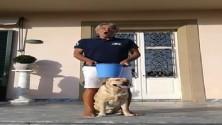 Bocelli, doccia gelata (con acuto) contro la Sla    E quella di Pepito Rossi