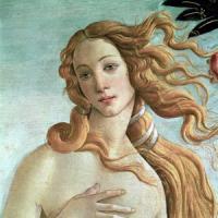"""La Reggia Venaria: """"Pienamente disponibili ad accogliere la Venere"""""""