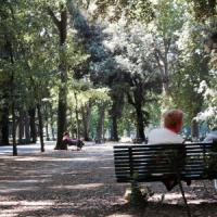 Cascine, accordo Comune-Forestale per il controllo del Parco