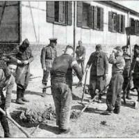 Risarcimenti alle vittime del Nazismo, decide la Corte Costituzionale