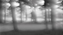 Fofu, il festival  della fotografia fra natura e nudo