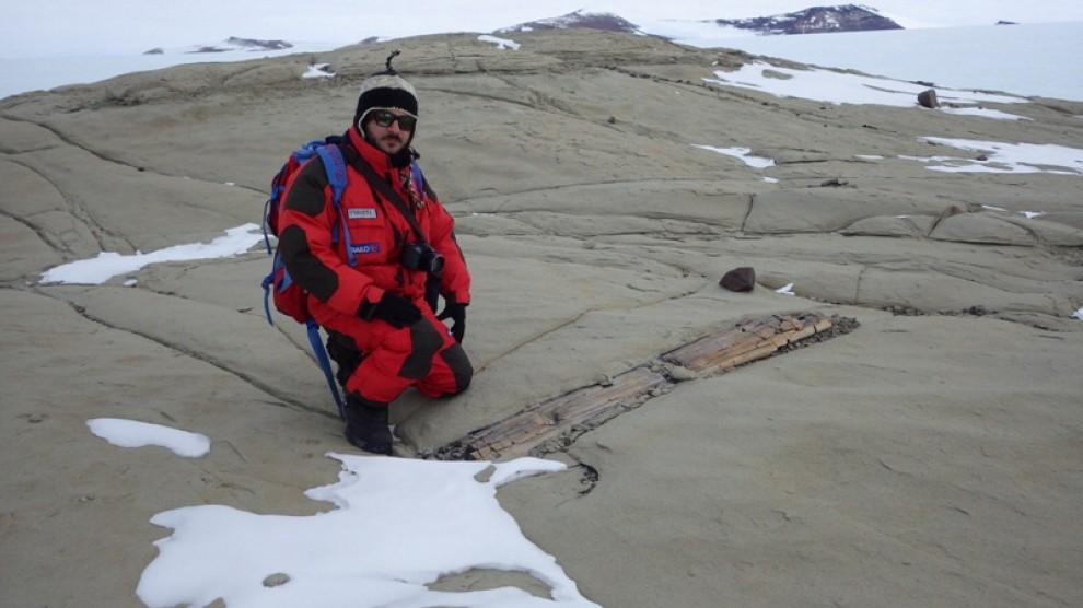 Una foresta fossile in Antartide: tronchi carbonizzati di 250 milioni di anni fa