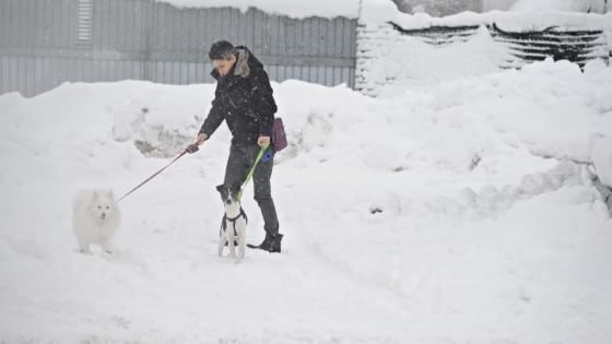 Neve sulla Toscana: strade e scuole chiuse, treni fermi