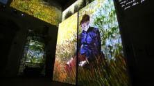 Van Gogh multimediale Sconto per Caparezza