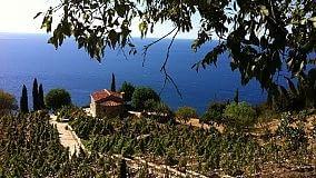 Vd/ L'Elba del gusto - Azienda Arrighi   La nuova vita di Convivium     Archivio ristoranti -     Archivio vini