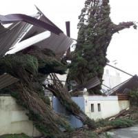 Emergenza maltempo, vento a 100 km all'ora in Toscana. Si stacca un masso e muore in...