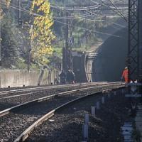 Albero trancia un cavo sulla Firenze-Roma, treni dell'alta velocità in ritardo
