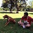 "Cani e padroni di corsa, torna la ""Maratonina a 6 zampe"""