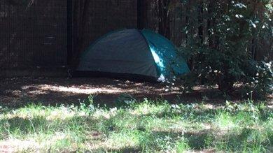 Dopo il prato della stazione- Foto   una tenda da campeggio in viale Malta