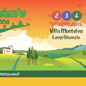 927564697 rua69 acompanhamento para tortellini de cogumelos acompanhantes vila pouca de aguiar modelo canvas acompanhamento online