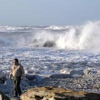 Toscana, il forte vento ferma traghetti e aerei. Due feriti per un albero caduto