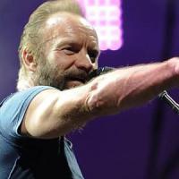 Il ritorno di Sting alle Cascine,