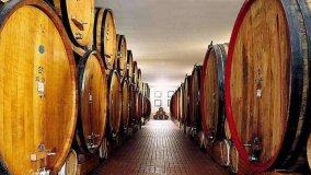 Wine Days at 'Cantine Aperte'