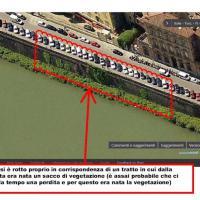 Firenze, la consigliera Amato: