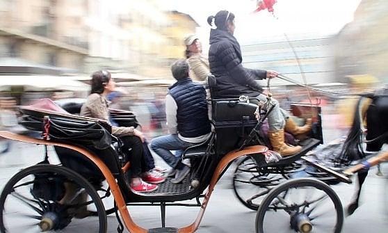 Firenze, in piazza per difendere i cavalli dal caldo
