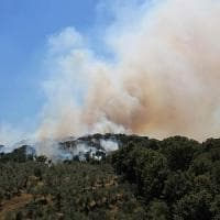 Incendi, decine di ettari di bosco in fiamme: venti roghi in Toscana