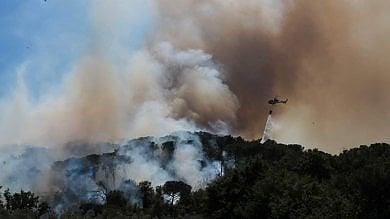 Decine di ettari di bosco in fiamme -   foto   venti roghi in un solo giorno in Toscana