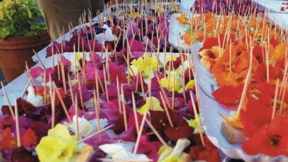 Quanto fanno bene i fiori nel piatto, la ricerca dell'Università di Pisa