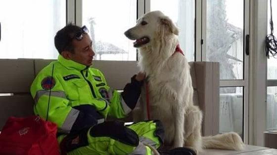 Follonica, cane-bagnino salva una ragazza in mare