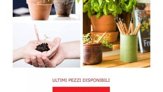 Se il basilico nasce da una matita,il blog per gli amanti del green