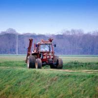 Pisa: le coltivazioni bio ci proteggono dal riscaldamento globale?