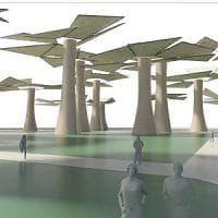 Pisa, una stampante 3D per copiare ad Abu Dhabi i pini toscani