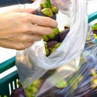 Prodotti bio, cresce la domanda: Toscana terza in Italia