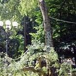 Bimba e zia uccise da un albero e beffate  dalla giustizia