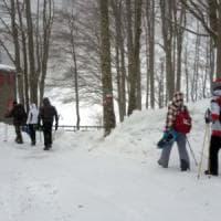 Neve in Toscana, ciaspolate sull'Appenino: escursioni al via