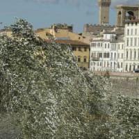 Firenze, clochard trovato morto in casa per il freddo