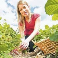 Toscana, più di 600 ettari in banca a disposizione di giovani che vogliono coltivarli