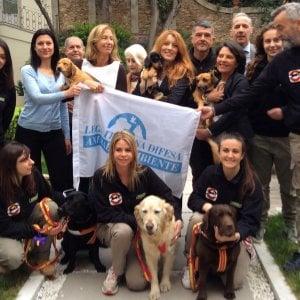 Raccolta fondi e convenzioni con i veterinari: a Firenze la Leidaa dell'onorevole Brambilla