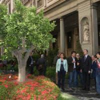Firenze, un giardino mediceo agli Uffizi