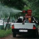 San Salvi, Trespiano, Galluzzo, Gavinana: le zone più amate dalle zanzare
