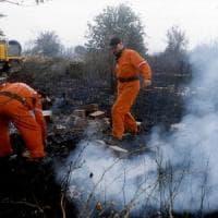 Maremma, fiamme nella pineta: scoppiati 5 incendi