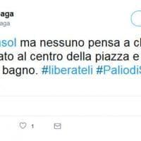 Palio di Siena: per i social vince Tornasol, il cavallo che si è rifiutato di correre