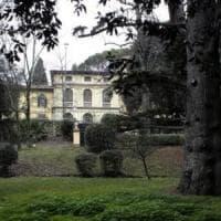 Firenze, scatta il piano verde: 800 nuovi alberi in città